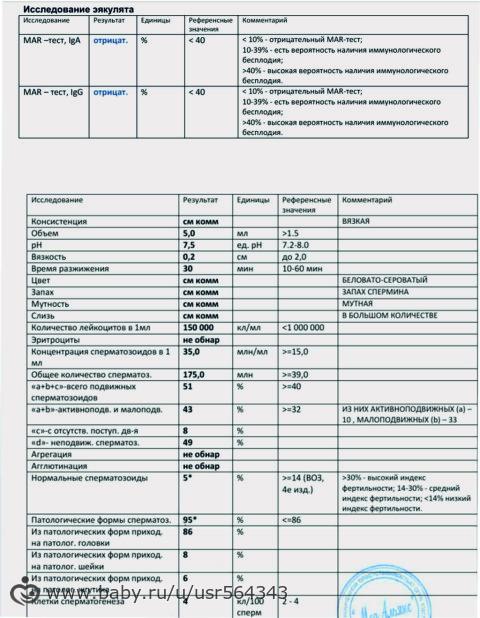 podgotovka-k-sdache-spermogrammi-mar-test