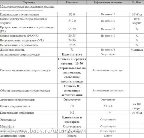 agglyutinatsiya-spermatozoidov-i-stepeni