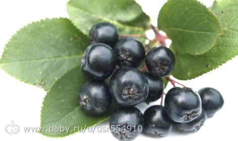 черноплодка и виноград